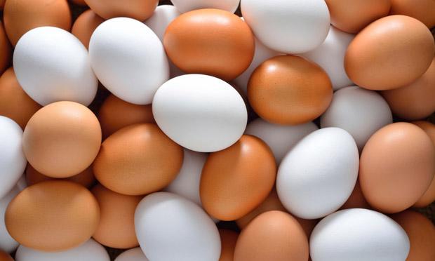 Ovos: Qual é o Melhor Lugar para Guardar?